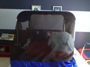 safety sleeper2